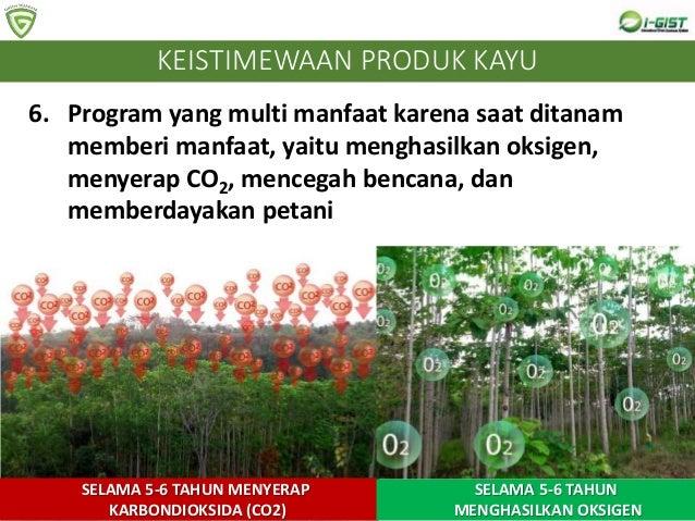 6. Program yang multi manfaat karena saat ditanam memberi manfaat, yaitu menghasilkan oksigen, menyerap CO2, mencegah benc...