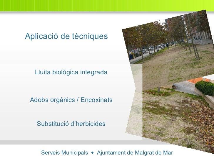Serveis Municipals     Ajuntament de Malgrat de Mar Aplicació de tècniques Lluita biològica integrada Adobs orgànics / En...