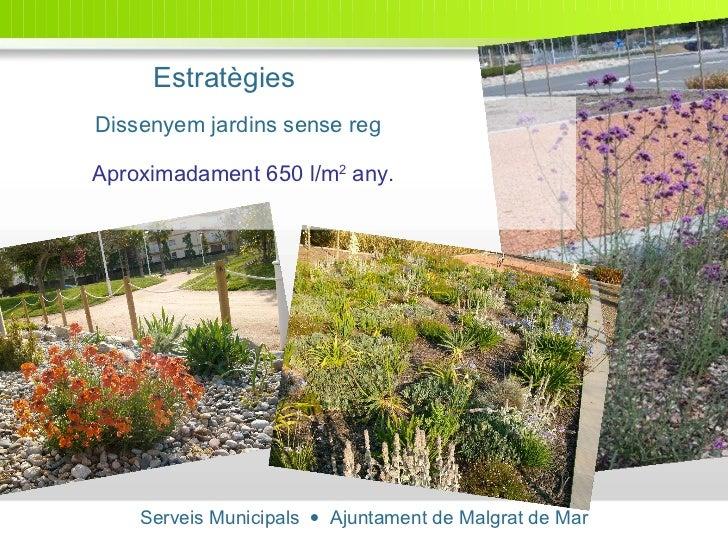 Serveis Municipals     Ajuntament de Malgrat de Mar Estratègies Dissenyem jardins sense reg   Aproximadament 650 l/m 2  a...