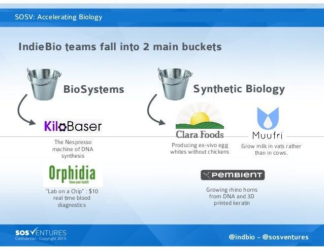 Confidential - Copyright 2015 BioSystems IndieBio teams fall into 2 main buckets SOSventures is the Accelerator VC Grow mi...