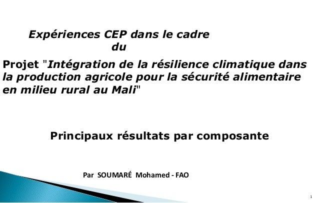 """1 Projet """"Intégration de la résilience climatique dans la production agricole pour la sécurité alimentaire en milieu rural..."""