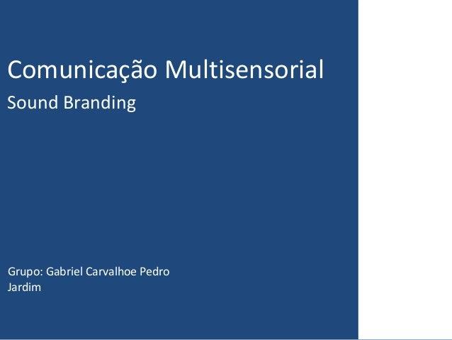 Comunicação MultisensorialSound BrandingGrupo: Gabriel Carvalhoe PedroJardim