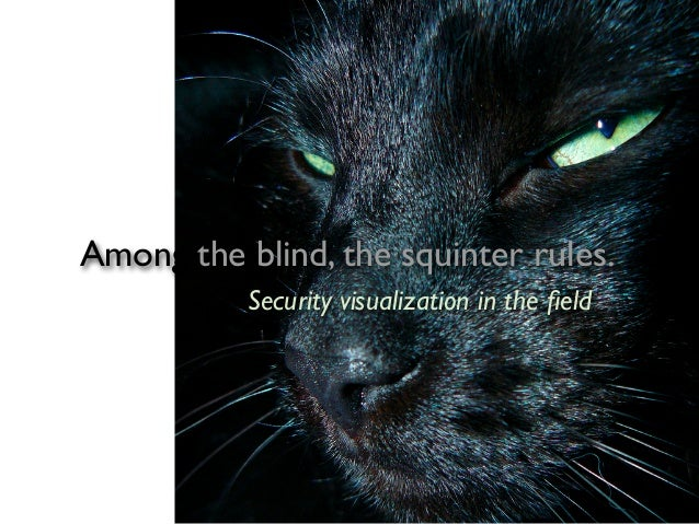 Among the blind, the squinter rules.           Security visualization in the field