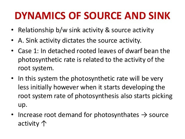 source and sink relationship in plants