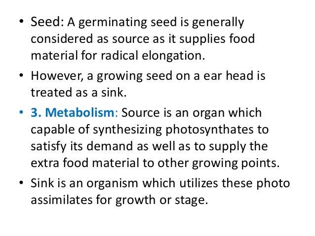 source sink relationship in germinating seeds a ziplock