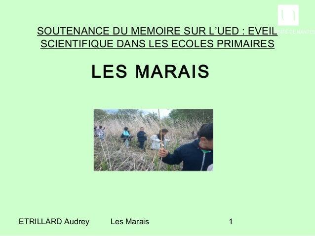 SOUTENANCE DU MEMOIRE SUR L'UED : EVEIL    SCIENTIFIQUE DANS LES ECOLES PRIMAIRES                   LES MARAISETRILLARD Au...