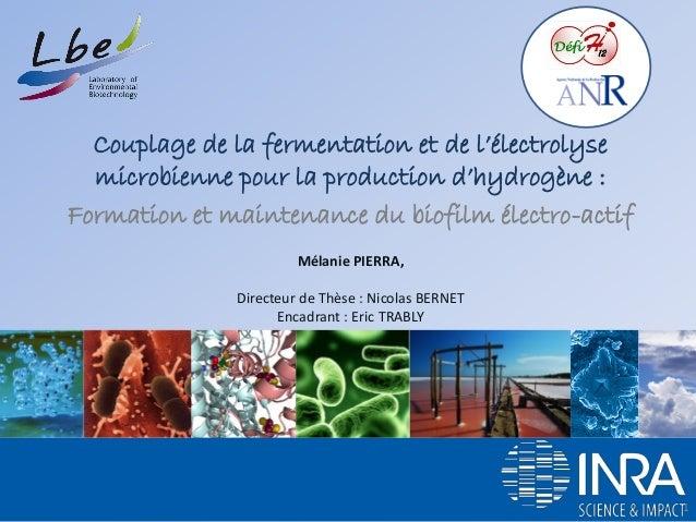 Couplage de la fermentation et de l'électrolyse microbienne pour la production d'hydrogène :  Formation et maintenance du ...