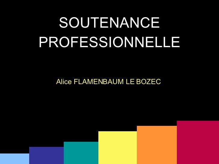 SOUTENANCE PROFESSIONNELLE Alice FLAMENBAUM LE BOZEC