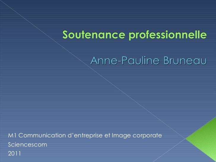 M1 Communication d'entreprise et Image corporate Sciencescom  2011
