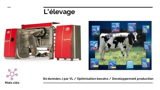 L'élevage 80 données J par VL / Optimisation besoins / Developpement production Mots clés
