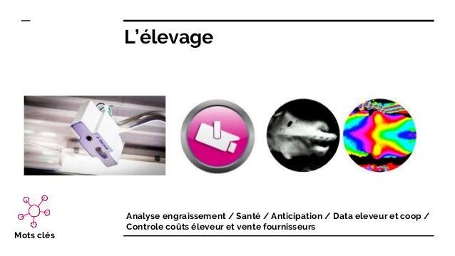 L'élevage Analyse engraissement / Santé / Anticipation / Data eleveur et coop / Controle coûts éleveur et vente fournisseu...