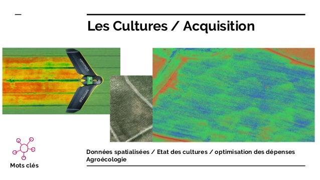 Les Cultures / Acquisition Données spatialisées / Etat des cultures / optimisation des dépenses Agroécologie Mots clés