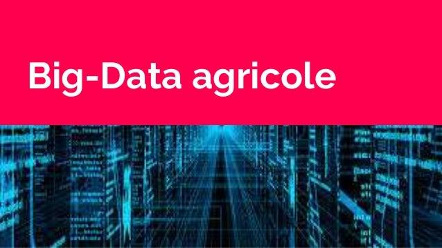 Big-Data agricole