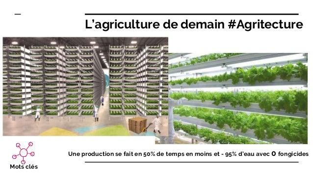 Une production se fait en 50% de temps en moins et - 95% d'eau avec 0 fongicides Mots clés L'agriculture de demain #Agrite...
