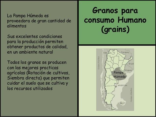 La Pampa Húmeda es  proveedora de gran cantidad de  alimentos  Sus excelentes condiciones  para la producción permiten  ob...