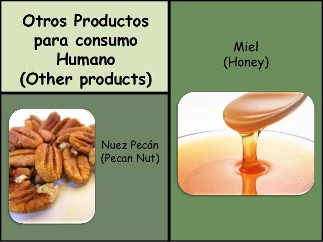 Otros Productos  para consumo  Humano  (Other products)  Miel  (Honey)  Nuez Pecán  (Pecan Nut)