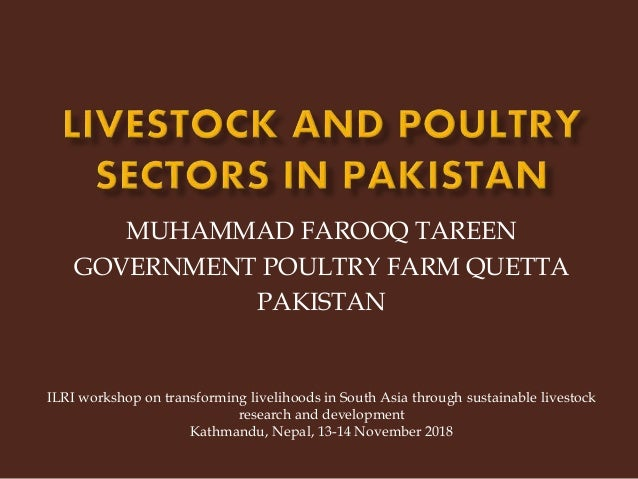 MUHAMMAD FAROOQ TAREEN GOVERNMENT POULTRY FARM QUETTA PAKISTAN ILRI workshop on transforming livelihoods in South Asia thr...