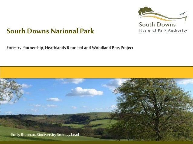 South Downs National Park Forestry Partnership, Heathlands Reunited and Woodland Bats Project EmilyBrennan,BiodiversityStr...