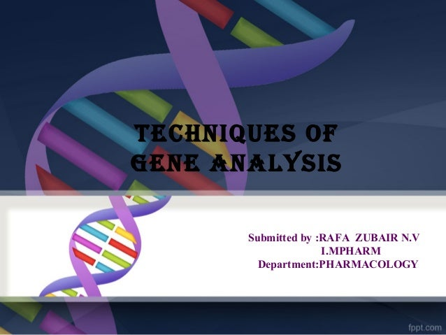 TECHNIQUES OF GENE ANALYSIS Submitted by :RAFA ZUBAIR N.V I.MPHARM Department:PHARMACOLOGY
