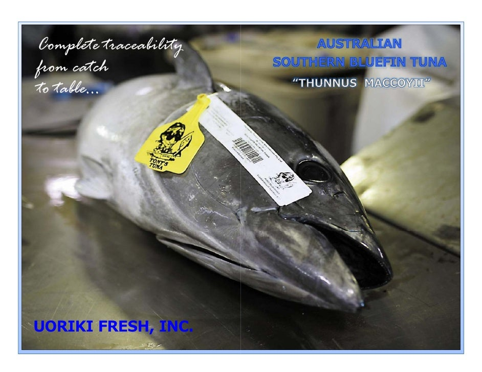 Complete traceability      p              y from catch to table...