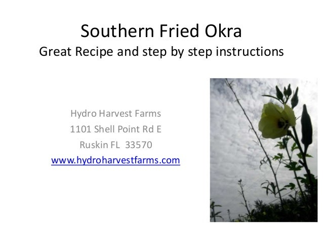 Southern Fried OkraGreat Recipe and step by step instructionsHydro Harvest Farms1101 Shell Point Rd ERuskin FL 33570www.hy...