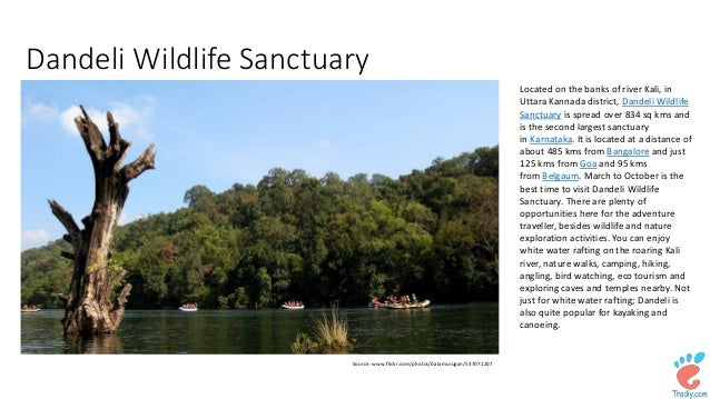 top 10 wildlife sanctuaries in india There are hundreds of national parks in india,  discover where to find them at these top parks to see wildlife in india  10 top destinations in india for.