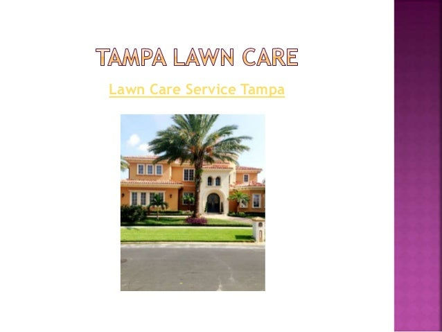 South Tampa Landscaping U0026 Landscape Lighting Service
