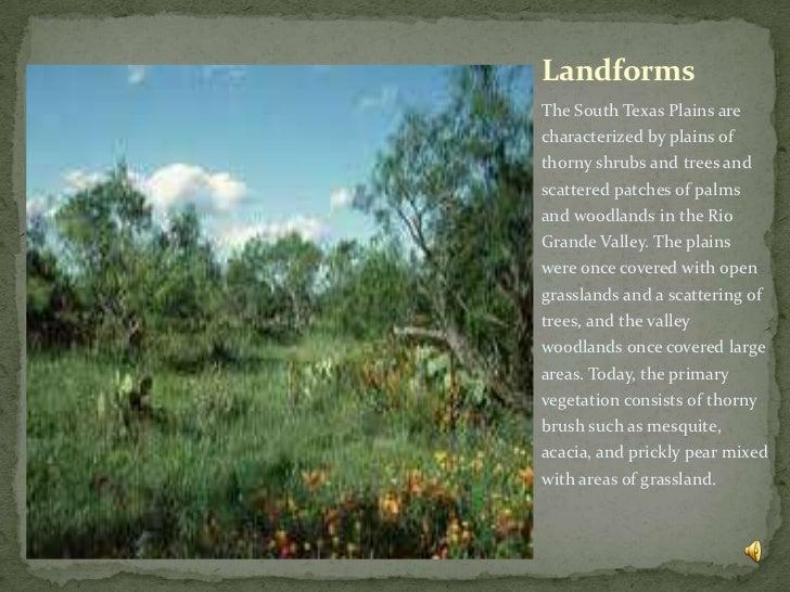 The Woodlands Texas Flooding >> South texas plains