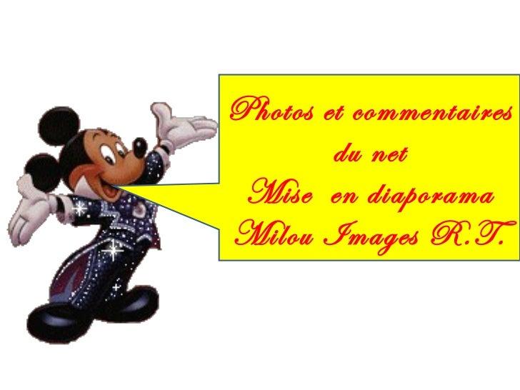 Photos et commentaires du net Mise  en diaporama Milou Images R.T.