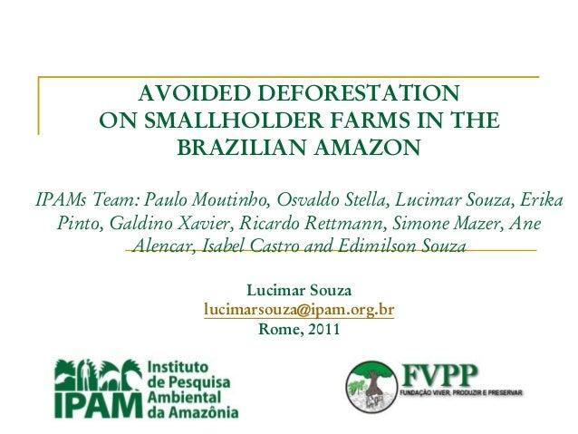 AVOIDED DEFORESTATION ON SMALLHOLDER FARMS IN THE BRAZILIAN AMAZON IPAMs Team: Paulo Moutinho, Osvaldo Stella, Lucimar Sou...