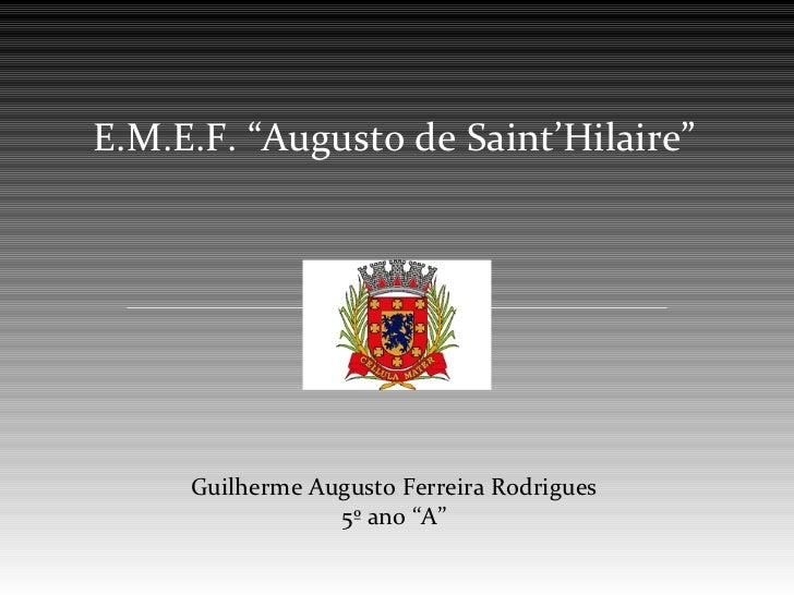 "E.M.E.F. ""Augusto de Saint'Hilaire""     Guilherme Augusto Ferreira Rodrigues                 5º ano ""A"""
