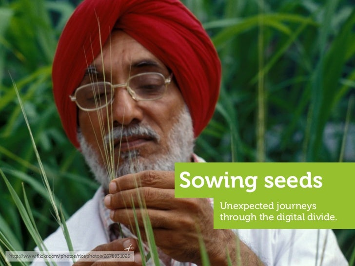 Sowing seeds                                                        Unexpected journeys                                   ...
