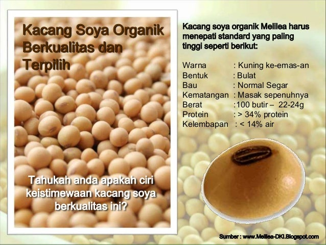 Kacang Soya Organik  Berkualitas dan  Terpilih  Tahukah anda apakah ciri  keistimewaan kacang soya  berkualitas ini?  Kaca...