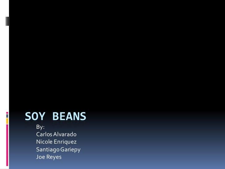 Soy Beans <br />By:<br />Carlos Alvarado<br />Nicole Enriquez<br />Santiago Gariepy<br />Joe Reyes<br />