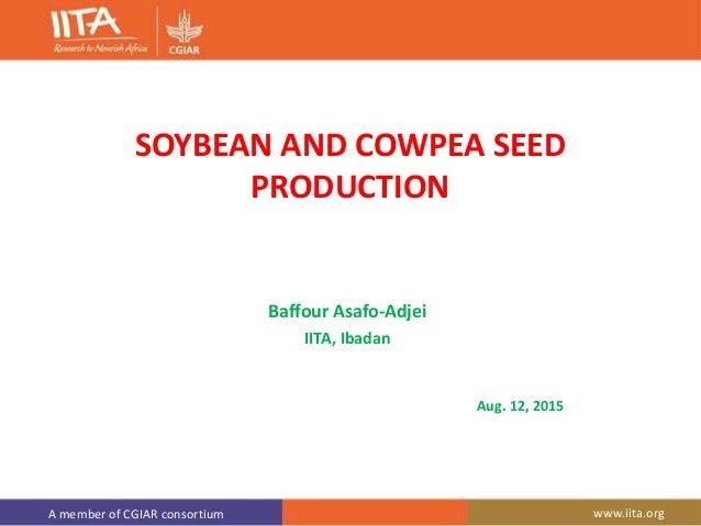 A member of CGIAR consortium www.iita.org SOYBEAN AND COWPEA SEED PRODUCTION Baffour Asafo-Adjei IITA, Ibadan Aug. 12, 2015