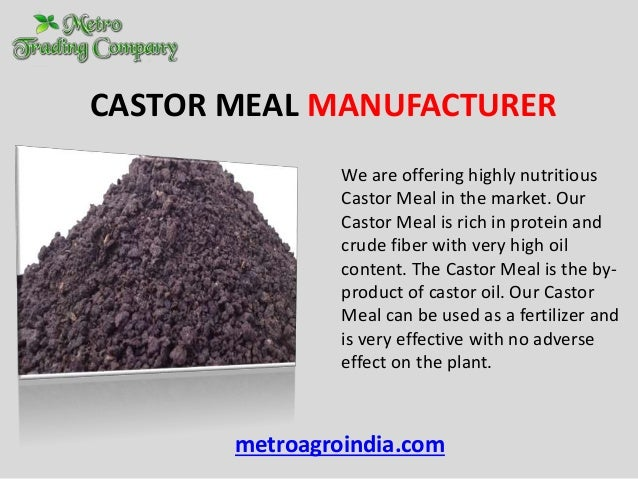 Soybean Meal Manufacturer in India