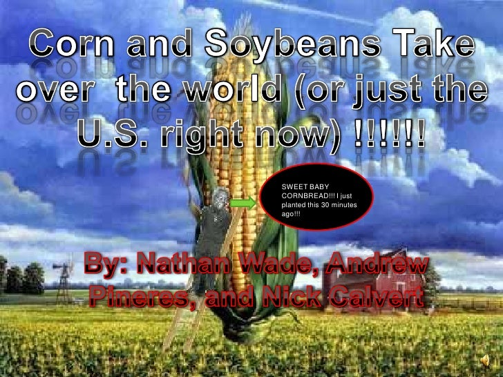 Corn and Soybeans Take over  the world (or just the U.S. right now) !!!!!! <br />SWEET BABY CORNBREAD!!! I just planted th...