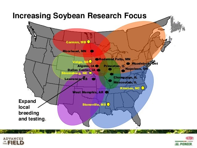 Soybean maturity groups