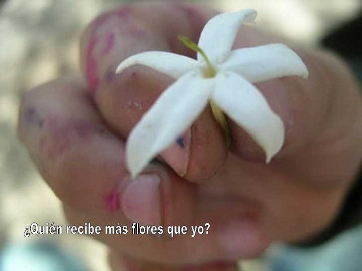 ¿Quién recibe más flores que yo?