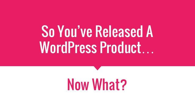 So You've Released A WordPress Product… Now What?