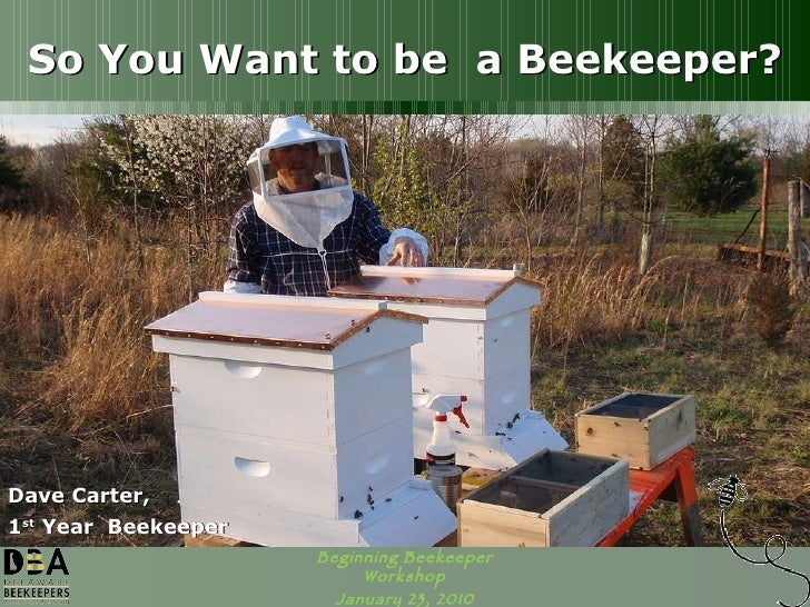 So You Want to be  a Beekeeper? Dave Carter, 1 st  Year  Beekeeper