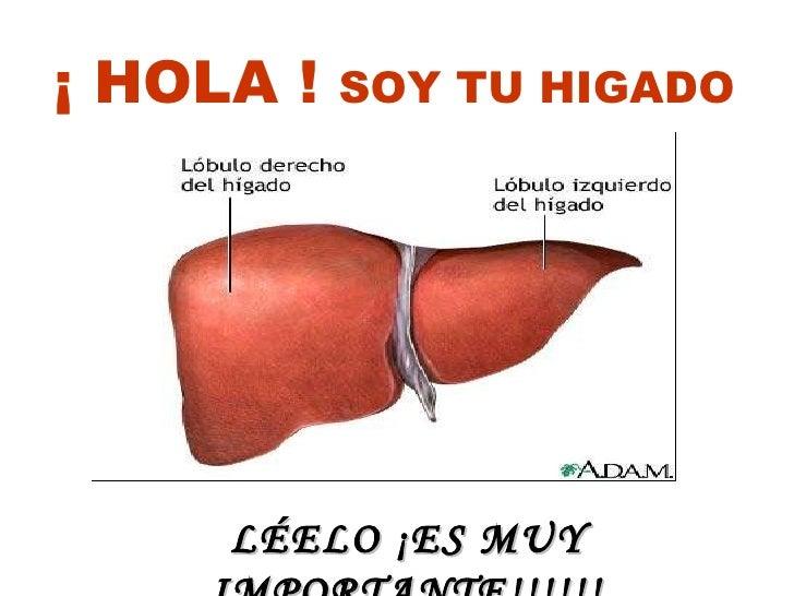 LÉELO ¡ES MUY IMPORTANTE!!!!!! ¡ HOLA !  SOY TU HIGADO