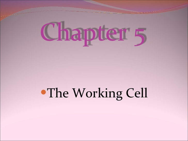 <ul><li>The Working Cell </li></ul>Chapter 5