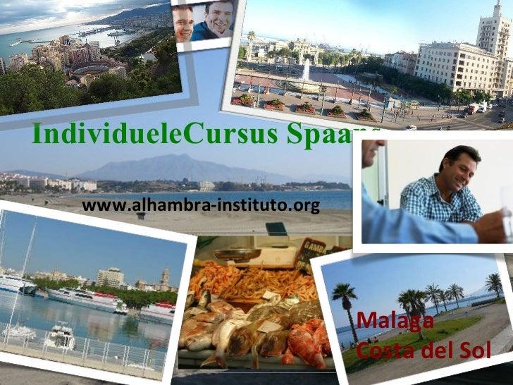 Individuele Cursus Spaans Malaga  Costa del Sol www.alhambra-instituto.org