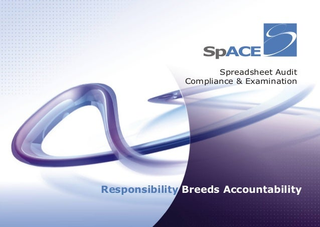 Spreadsheet Audit Compliance & Examination Responsibility Breeds Accountability SpACE