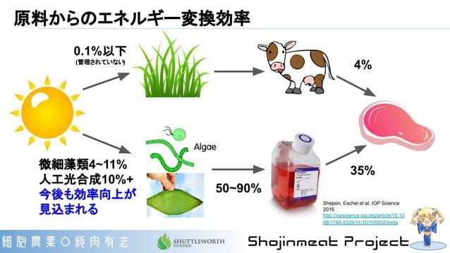 原料からのエネルギー変換効率 0.1%以下 (管理されていない) 微細藻類4~11% 人工光合成10%+ 今後も効率向上が 見込まれる 4% 35% 50~90% Shepon, Eschel et al, IOP Science 2016 h...