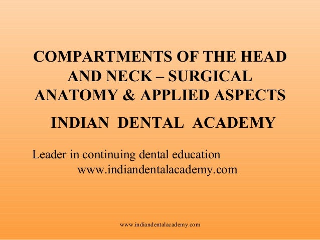 COMPARTMENTS OF THE HEAD AND NECK – SURGICAL ANATOMY & APPLIED ASPECTS INDIAN DENTAL ACADEMY Leader in continuing dental e...