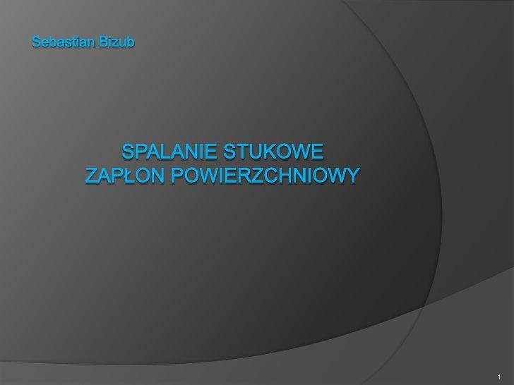 Sebastian Bizub<br />Spalanie stukowezapłon powierzchniowy<br />1<br />