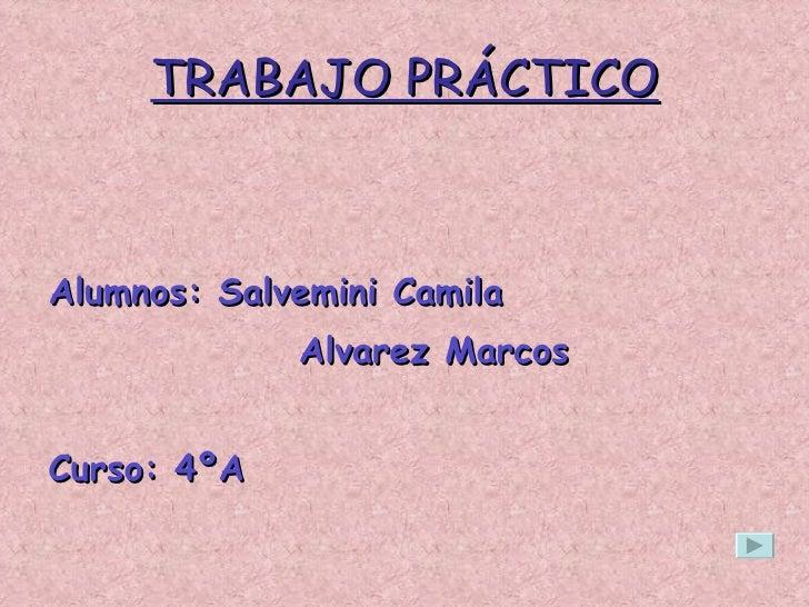 TRABAJO PRÁCTICO <ul><li>Alumnos: Salvemini Camila </li></ul><ul><li>Alvarez Marcos </li></ul><ul><li>Curso: 4ºA </li></ul>