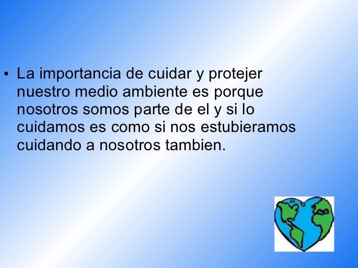 Ayuda cuidar el medio ambiente - Como humidificar el ambiente ...